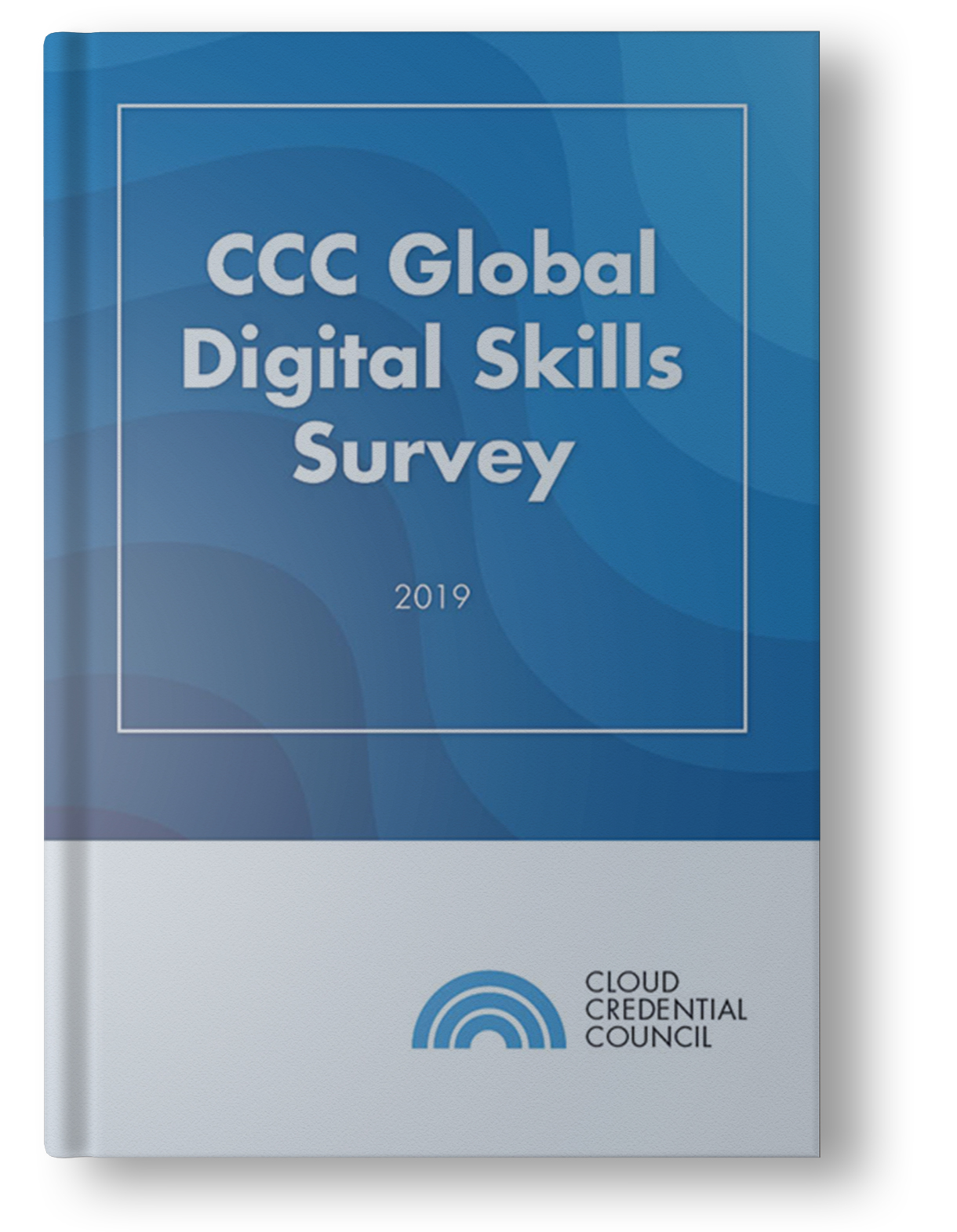 Digital-Skills-Survey-2019-Report-Mockup