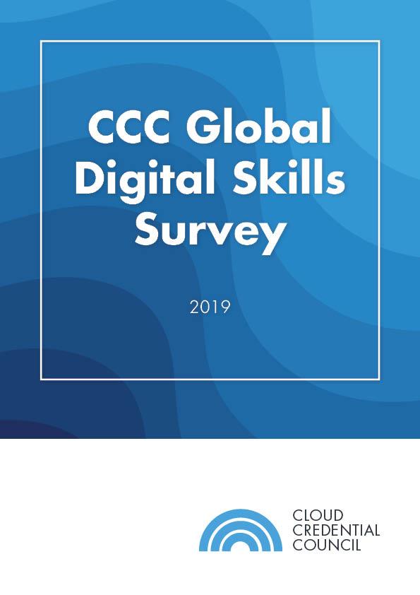 Digital Skills Survey 2019 Report