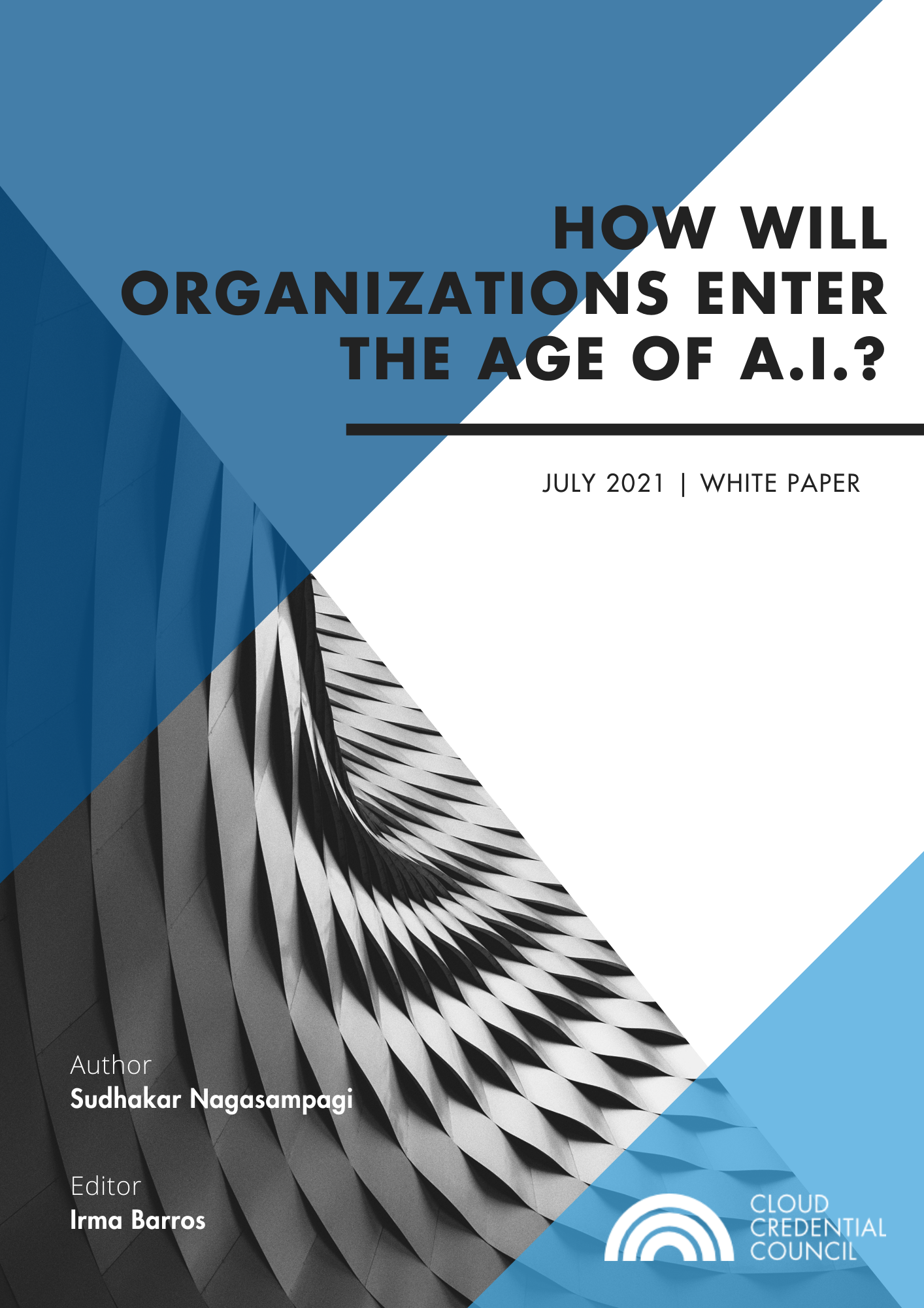 White Paper - How will Organization Enter the Age of AI